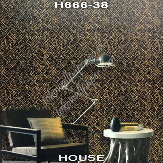 HOUSE H666-38 