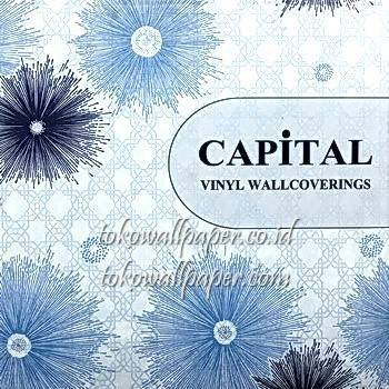 CAPITAL 